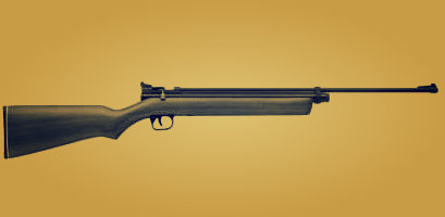 A bolt action .22 rifle